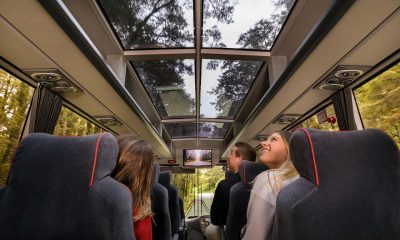 How to prepare for a Milford Sound bus trip
