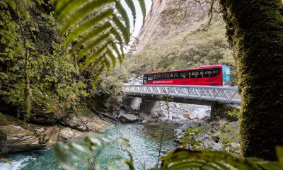 The top 9 reasons to book a Milford Sound day trip