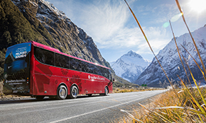 Milford Sound Coach<br/>& Nature Cruise<br/>with return flight
