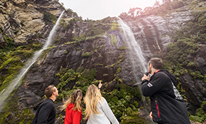 Milford Sound Coach & Nature Cruise