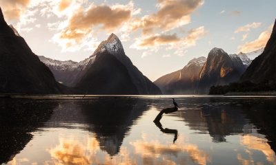 The best walks on the road to Milford Sound
