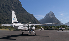 Milford Sound Scenic <br/>Flight & Nature Cruise