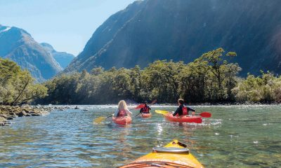 Kayaking in Milford Sound – The Perfect Complement to your Cruise