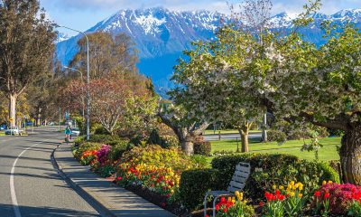 Top 5 things to do in Te Anau